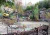 Freunde und Förderer finanzieren Umbau der Löwensavanne -  Löwe Majo bekommt kurzfristig Gesellschaft
